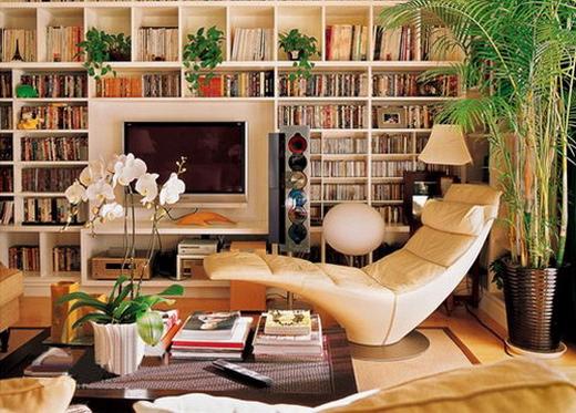 4,很喜欢这个空间的设计,电视背景墙设计成书柜,中间的留白成为电视机